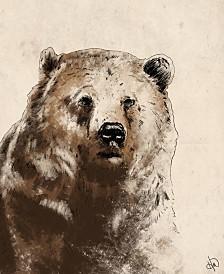 "Rustic Bear Drawing 20"" X 24"" Canvas Wall Art Print"