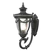 Anise Collection 1 light outdoor sconce in Textured Matte Black