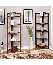 Emery 5-Tiered Corner Ladder Shelf