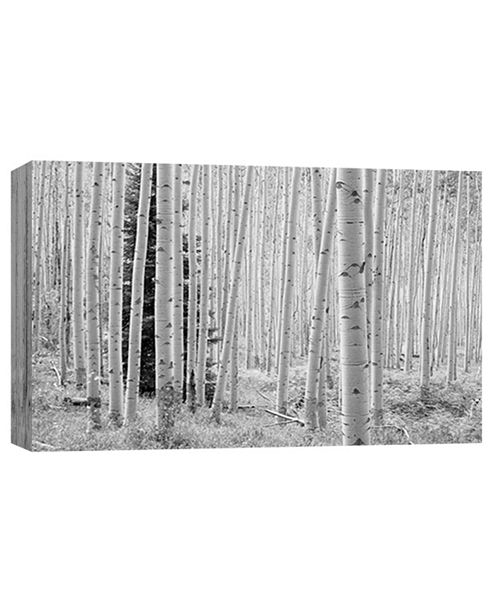 PTM Images Black And White 1 Decorative Canvas Wall Art