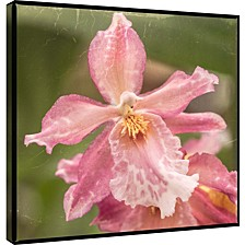 Orchid Decorative Canvas Wall Art