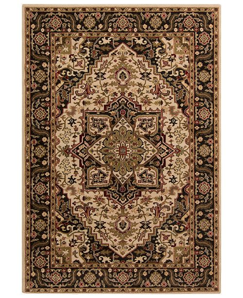 "Surya Riley RLY-5038 Dark Brown 4' x 5'5"" Area Rug"
