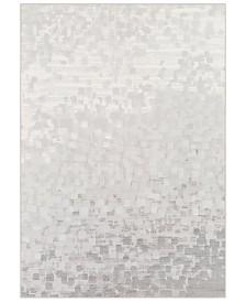 """Surya Contempo CPO-3843 Light Gray 9'2"""" x 12'9"""" Area Rug"""