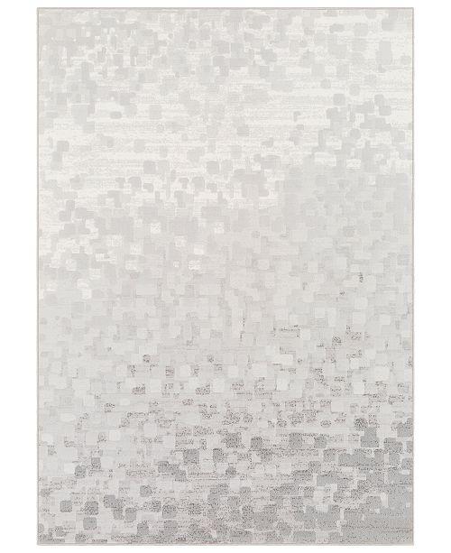 """Surya Contempo CPO-3843 Light Gray 5'3"""" x 7'6"""" Area Rug"""