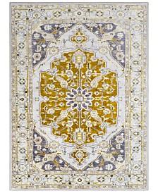 "Surya Silk Road SKR-2317 Olive 7'10"" x 10'3"" Area Rug"