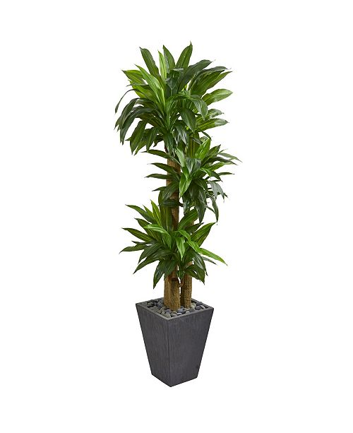 Nearly Natural 5.5' Cornstalk Dracaena Artificial Plant in Slate Planter - Real Touch
