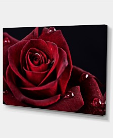 """Designart Red Rose With Raindrops On Black Flowers Canvas Wall Artwork - 32"""" X 16"""""""
