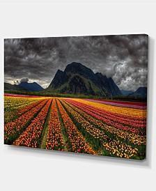 "Designart Beautiful Colored Tulips Panorama Large Landscape Canvas Art - 32"" X 16"""