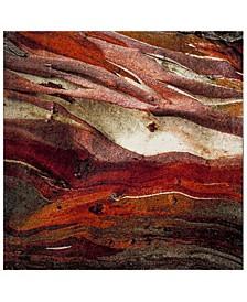 """Glacier Red and Multi 5'3"""" x 5'3"""" Square Area Rug"""