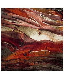 """Safavieh Glacier Red and Multi 5'3"""" x 5'3"""" Square Area Rug"""