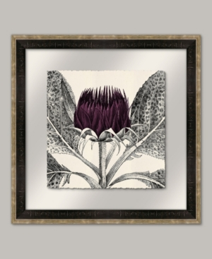 Arctium Ii in Eggplant Framed Giclee Wall Art - 22