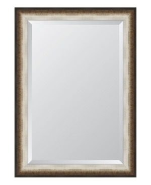 Black and Soft Silver Radiant Swan Framed Mirror - 30.5