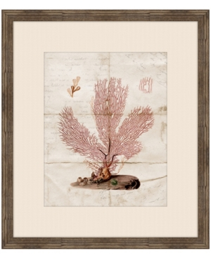 Gorgone Ancien Ii Framed Giclee Wall Art - 27