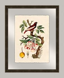 """Oiseaux III Framed Giclee Wall Art - 20"""" x 25"""" x 2"""""""