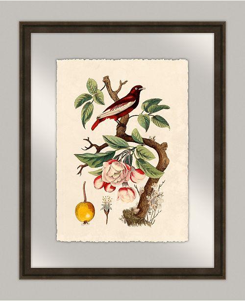 "Melissa Van Hise Oiseaux III Framed Giclee Wall Art - 20"" x 25"" x 2"""