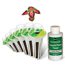 AeroGarden Colorful Coleus 6-Pod Seed Kit