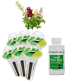 AeroGarden Spring Flowers 6-Pod Seed Kit