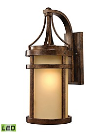 Winona Collection 1 light outdoor sconce in Hazelnut Bronze - LED Offering Up To 800 Lumens (60 Watt Equivalent)