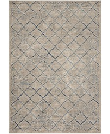 Brentwood Light Gray and Blue 4' x 6' Area Rug