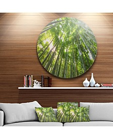 "Designart 'Kyoto Forest' Oversized Forest Metal Artwork - 23"" x 23"""