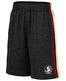 Colosseum Big Boys Florida State Seminoles Team Stripe Shorts