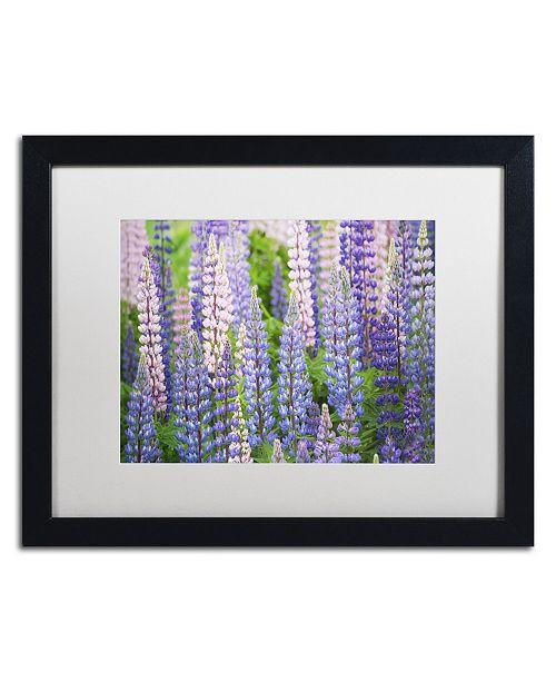 "Trademark Global Cora Niele 'Blue Pink Lupine Field' Matted Framed Art - 16"" x 20"" x 0.5"""