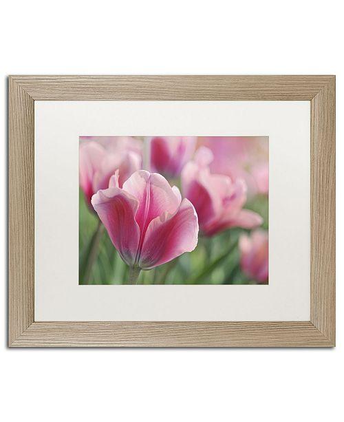 "Trademark Global Cora Niele 'Tulip Mirella Pink' Matted Framed Art - 20"" x 16"" x 0.5"""
