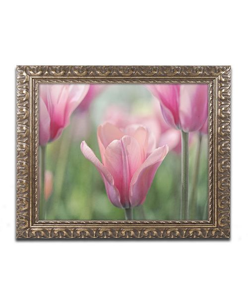 "Trademark Global Cora Niele 'Tulip Mirella' Ornate Framed Art - 20"" x 16"" x 0.5"""