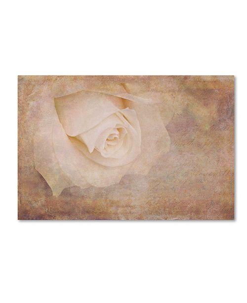 "Trademark Global Cora Niele 'Vintage Rose Card' Canvas Art - 24"" x 16"" x 2"""