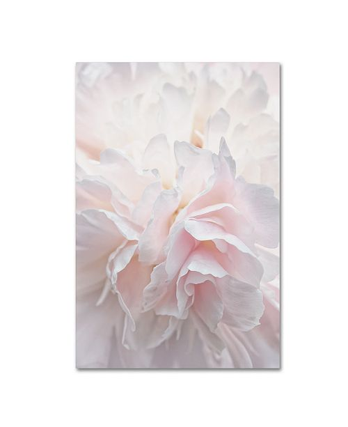 "Trademark Global Cora Niele 'Pink Peony Petals IV' Canvas Art - 19"" x 12"" x 2"""