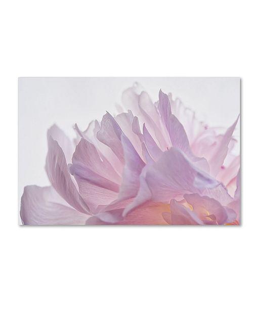 "Trademark Global Cora Niele 'Pink Peony Petals VI' Canvas Art - 32"" x 22"" x 2"""
