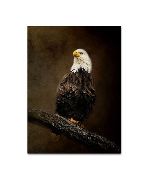 "Trademark Global Jai Johnson 'Portrait Of An Eagle' Canvas Art - 47"" x 35"" x 2"""