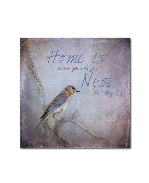 "Trademark Global Jai Johnson 'Home Is Wherever You Make Your Nest' Canvas Art - 24"" x 24"" x 2"""