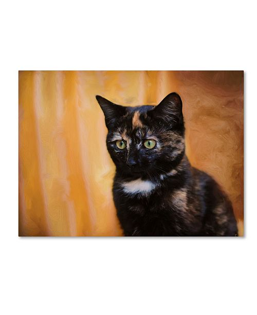 "Trademark Global Jai Johnson 'Jeweled Eyes Tortoiseshell Kitten' Canvas Art - 32"" x 24"" x 2"""