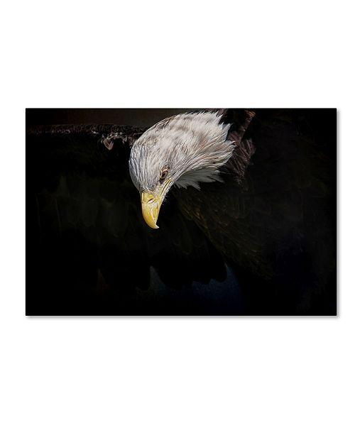 "Trademark Global Jai Johnson 'Shadow Hunter Bald Eagle' Canvas Art - 24"" x 16"" x 2"""