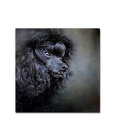 "Jai Johnson 'Snack Spotter Toy Black Poodle' Canvas Art - 14"" x 14"" x 2"""