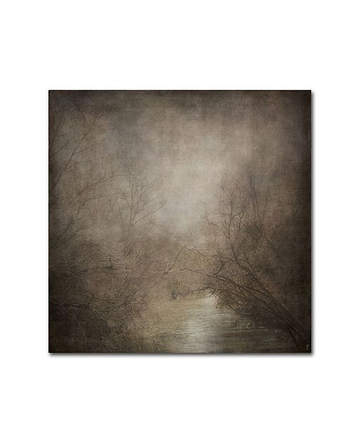 "Trademark Global Jai Johnson 'Hidden Waters' Canvas Art - 24"" x 24"" x 2"""