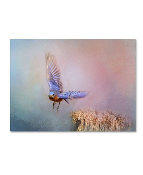 "Trademark Global Jai Johnson 'Bluebird Escape' Canvas Art - 32"" x 24"" x 2"""