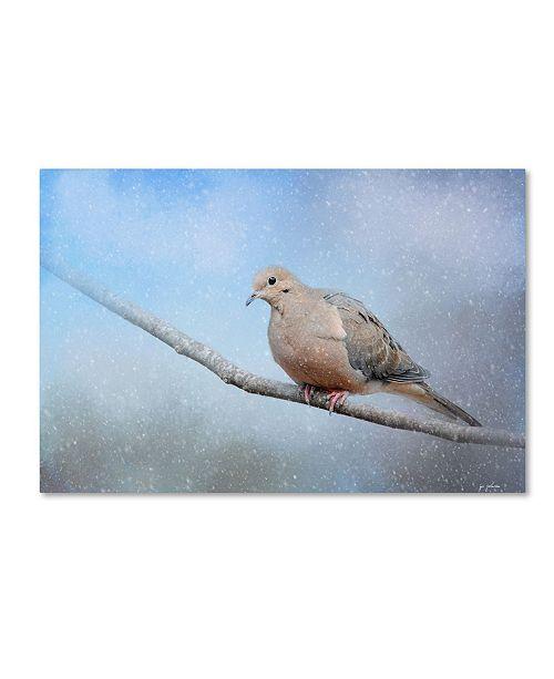 "Trademark Global Jai Johnson 'Dove In The Snow' Canvas Art - 24"" x 16"" x 2"""
