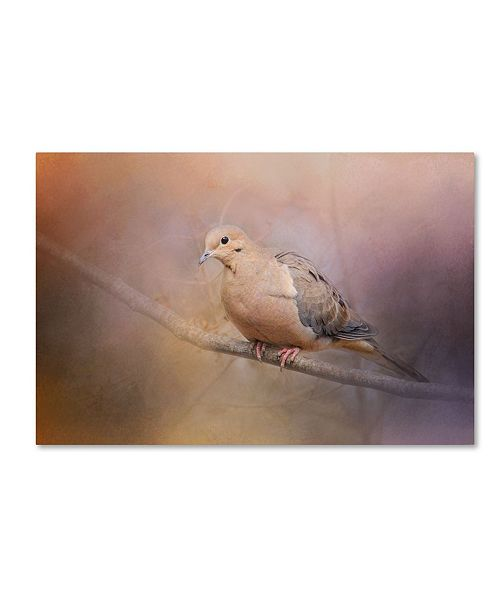 "Trademark Global Jai Johnson 'Mourning Dove On A Winter Evening' Canvas Art - 19"" x 12"" x 2"""