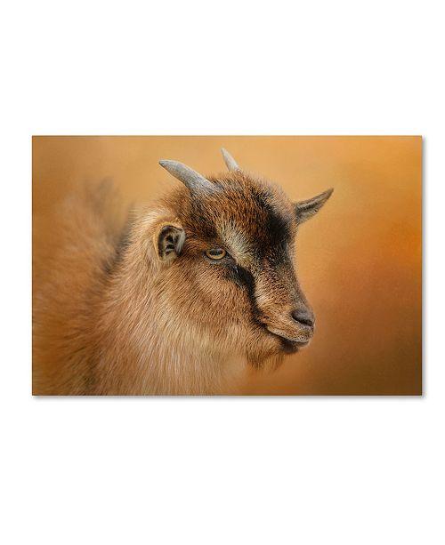 "Trademark Global Jai Johnson 'Portrait Of A Nubian Dwarf Goat' Canvas Art - 47"" x 30"" x 2"""