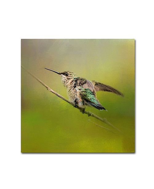 "Trademark Global Jai Johnson 'Hummingbird On Lime' Canvas Art - 14"" x 14"" x 2"""