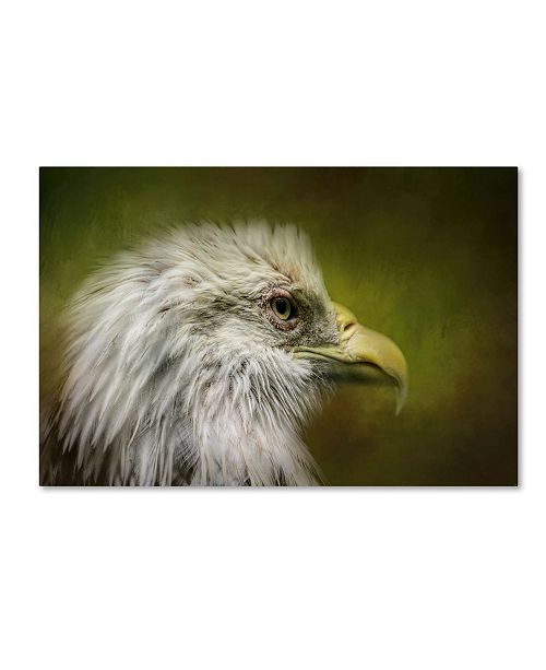 "Trademark Global Jai Johnson 'Bald Eagle In The Grove' Canvas Art - 32"" x 22"" x 2"""