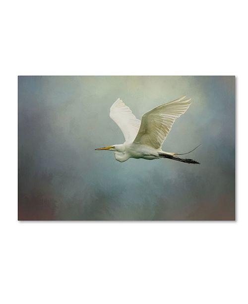 "Trademark Global Jai Johnson 'Sea Flight' Canvas Art - 19"" x 12"" x 2"""