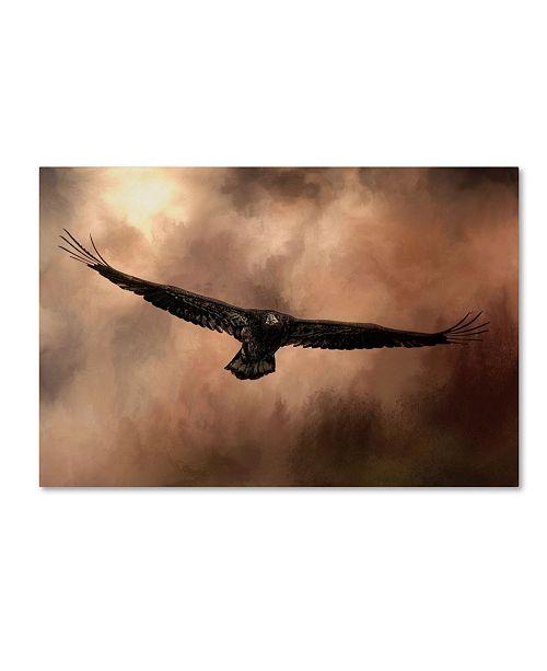 "Trademark Global Jai Johnson 'Juvenile Bald Eagle In The Sepia Sky' Canvas Art - 32"" x 22"" x 2"""