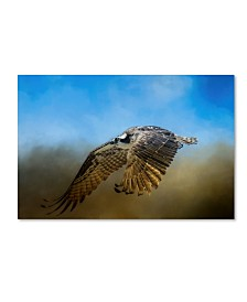 "Jai Johnson 'Osprey Over Pickwick' Canvas Art - 19"" x 12"" x 2"""
