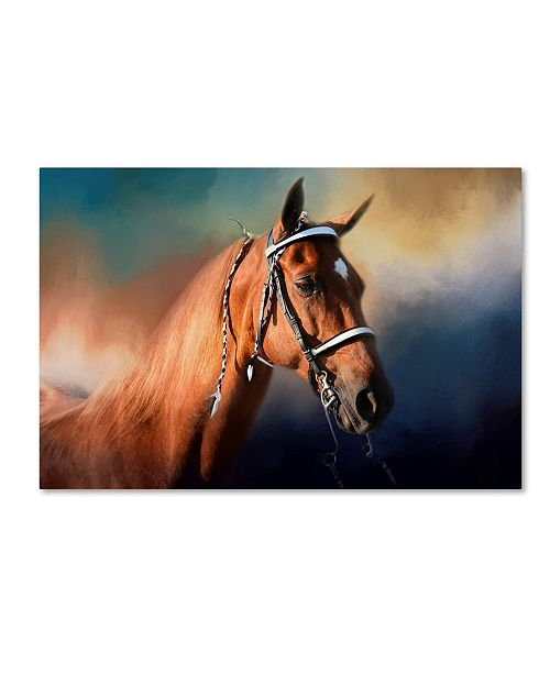 "Trademark Global Jai Johnson 'Bathed In The Evening Light' Canvas Art - 47"" x 30"" x 2"""
