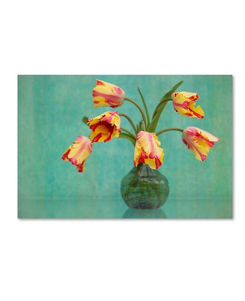 "Trademark Global Cora Niele 'Rembrandt Tulips' Canvas Art - 47"" x 30"" x 2"""