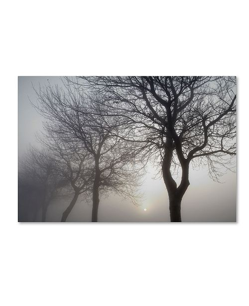 "Trademark Global Cora Niele 'Hazy Dawn With Tree Tree Silhouettes Bandw' Canvas Art - 19"" x 12"" x 2"""