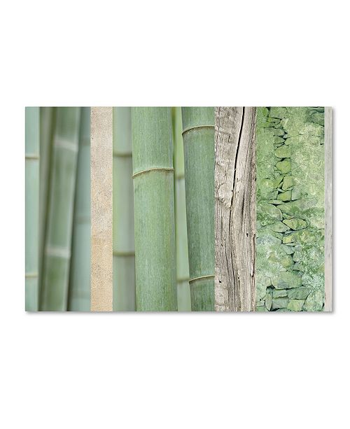 "Trademark Global Cora Niele 'Green Bamboo Collage' Canvas Art - 19"" x 12"" x 2"""